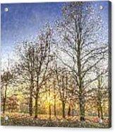 Greenwich Park London Art Acrylic Print