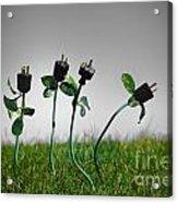 Growing Green Energy Acrylic Print