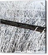 Hoar Frost On The Fence Acrylic Print