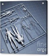 Human Cloning Acrylic Print