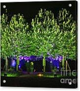Illumina Light Show At Schloss Dyck Germany Acrylic Print by David Davies