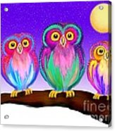 3 Little Owls In The Moonlight Acrylic Print