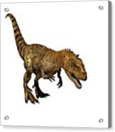 Majungasaurus Dinosaur Acrylic Print