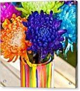 Multicolored Chrysanthemums  Acrylic Print