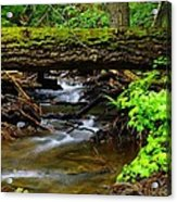 Natural Bridge Acrylic Print