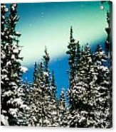 Northern Lights Aurora Borealis And Winter Forest Acrylic Print