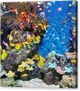 Ocean Aquarium In Shanghai Acrylic Print