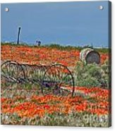 Old Farm Equipment Acrylic Print
