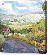 Out Santa Rosa Creek Road Acrylic Print by Joyce Hicks
