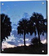 3 Palms 9/19 Acrylic Print
