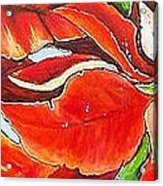 Poinsettias Acrylic Print