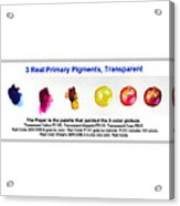 3 Primary Pigments - Apple Acrylic Print