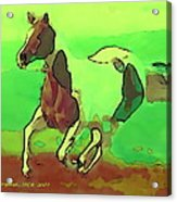 Running Horse Acrylic Print by David Skrypnyk
