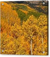 San Juan Mountains In Autumn Acrylic Print by Jetson Nguyen