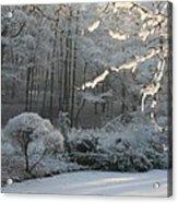 Snowy Trees Landscape Acrylic Print