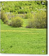Spring Farm Landscape In Maine Acrylic Print by Keith Webber Jr