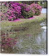 Spring In Mississippi Acrylic Print