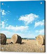 Straw Bales At A Stubbel Field Acrylic Print by Svetoslav Radkov