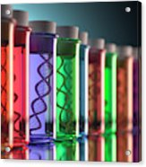 Test Tubes With Dna Acrylic Print
