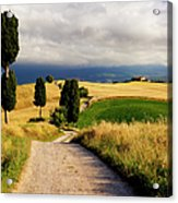 Tuscany Acrylic Print by Brian Jannsen