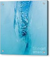 Underwater Crevasse In Thick Layer Of Floating Ice Acrylic Print