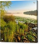 View Of The Dniper River At Morning Acrylic Print