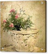 Vintage Blossom Acrylic Print