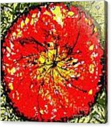 Wall Of Heavenly Flowers Acrylic Print