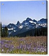 Wildflowers In The Cascades Acrylic Print