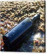 Wine In The Bottle. Acrylic Print by Alexandr  Malyshev