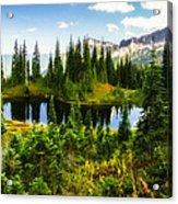 30920-55 Trailside Lake Acrylic Print