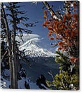Mt Hood From Lookout Mtn Acrylic Print
