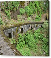 Usa, Oregon, Columbia River Gorge Acrylic Print