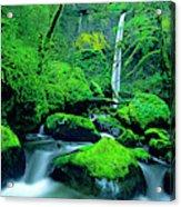 Usa, Oregon, Columbia River Gorge Acrylic Print