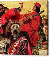 Silky Terrier Art Canvas Print Acrylic Print