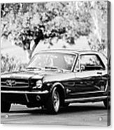 1965 Shelby Prototype Ford Mustang  Acrylic Print