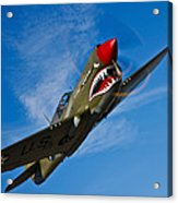A Curtiss P-40e Warhawk In Flight Acrylic Print