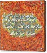 Burglar Beware Acrylic Print by Joe Dillon
