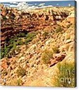Calf Creek Falls Canyon Acrylic Print