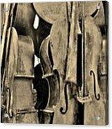 4 Cellos Sepia Acrylic Print