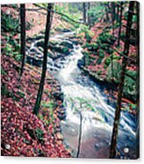 Chesterfield Gorge New Hampshire Acrylic Print by Edward Fielding