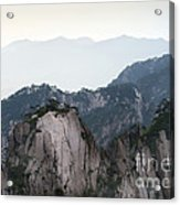Chinese White Pine On Mt. Huangshan Acrylic Print