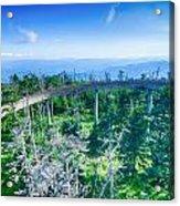 Clingmans Dome - Great Smoky Mountains National Park Acrylic Print