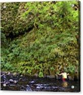 Columbia River Gorge, Oregon, Usa Acrylic Print