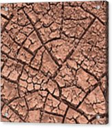 Cracked Dry Clay Acrylic Print