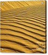 Desert Sand Dune Acrylic Print by Ezra Zahor