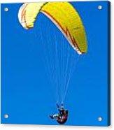 Flying Acrylic Print by Elijah Weber