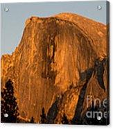 Half Dome, Yosemite Np Acrylic Print