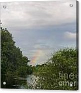 IImages From The Pantanal Acrylic Print