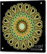 Kaleidoscope Ernst Haeckl Sea Life Series Acrylic Print